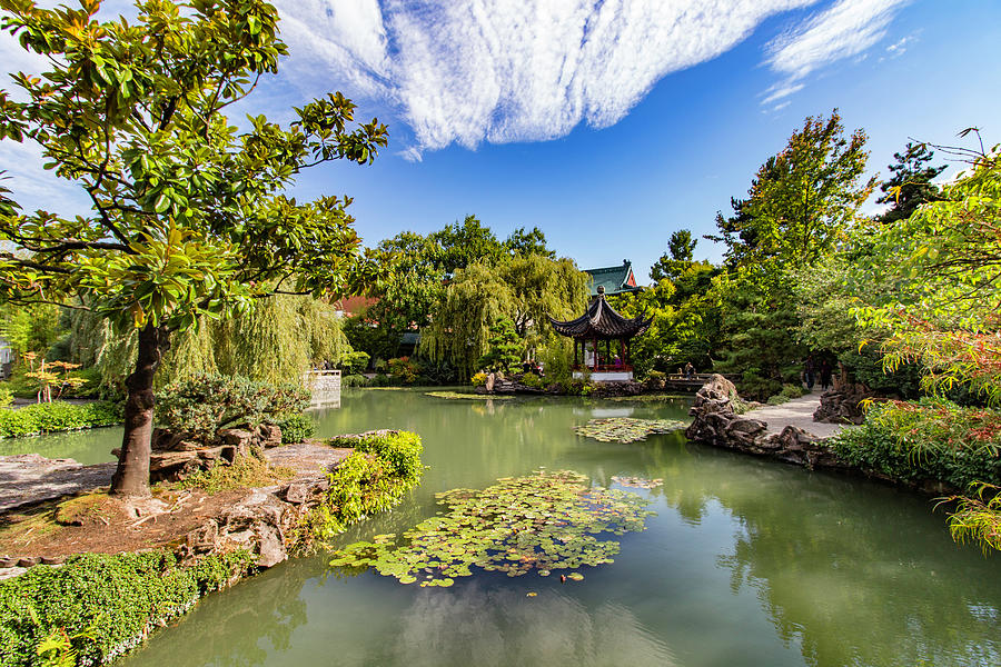 Gardens Photograph - Classical Chinese Garden, Vancouver, Canada by Venetia Featherstone-Witty