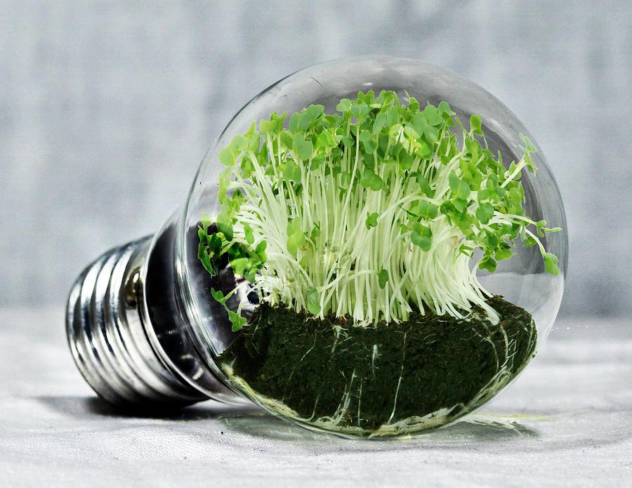 Clean Energy Digital Art