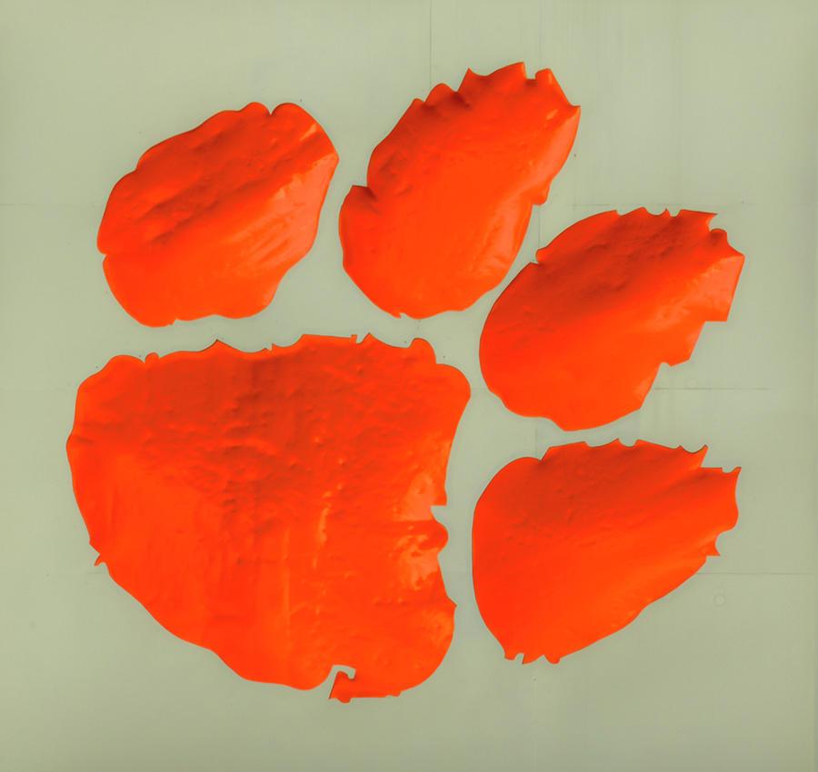 Clemson University Tigers Famous Tiger Paw 2 Football Art Photograph