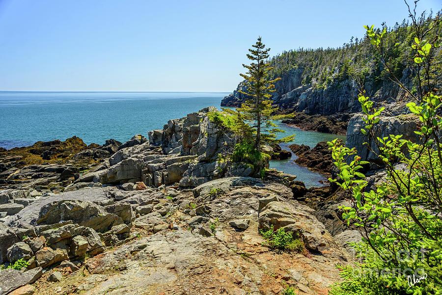 Cliffs Bold Coast Photograph