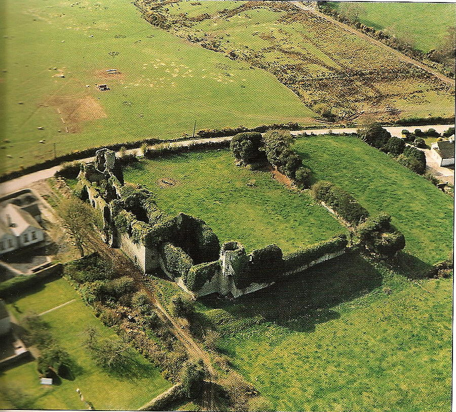 Clonmore Castle Aerial View by Val Byrne
