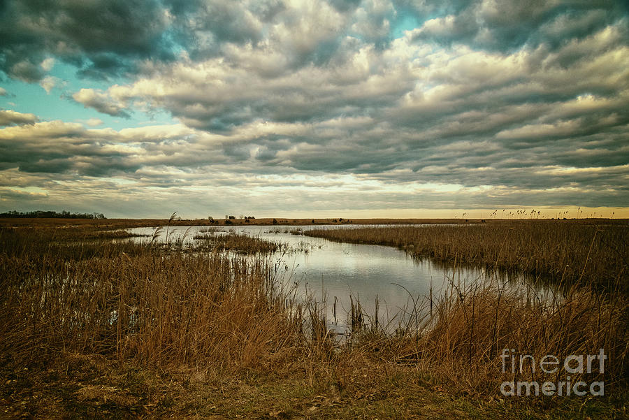 Clouds and Reflections by Debra Fedchin
