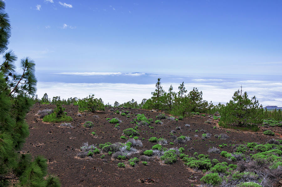 Clouds surrounding Teide National Park by Sun Travels