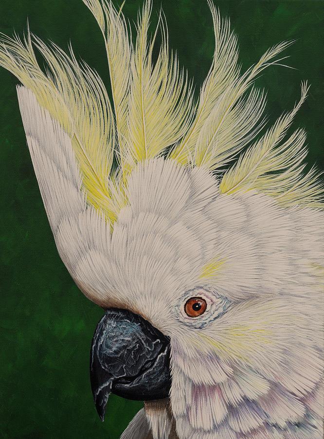 Cockatoo Painting - Cockatoo portrait 2 by Debra Dickson
