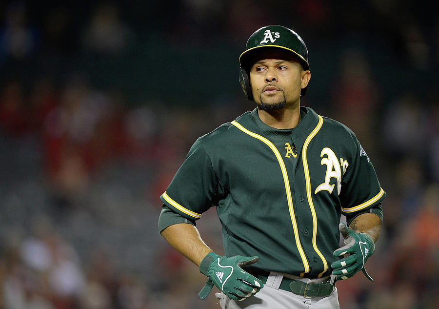 Coco Crisp Photograph by Harry How