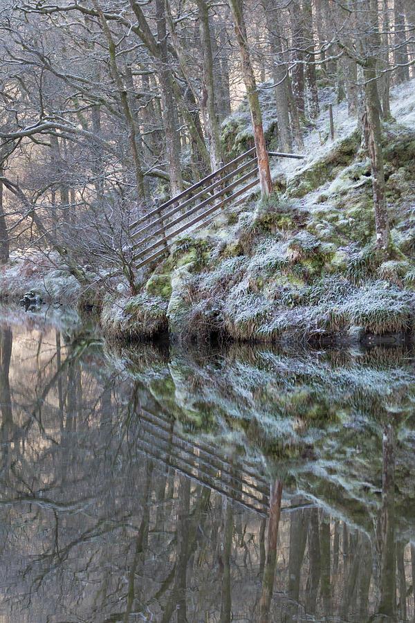Cold Reflections by Anita Nicholson