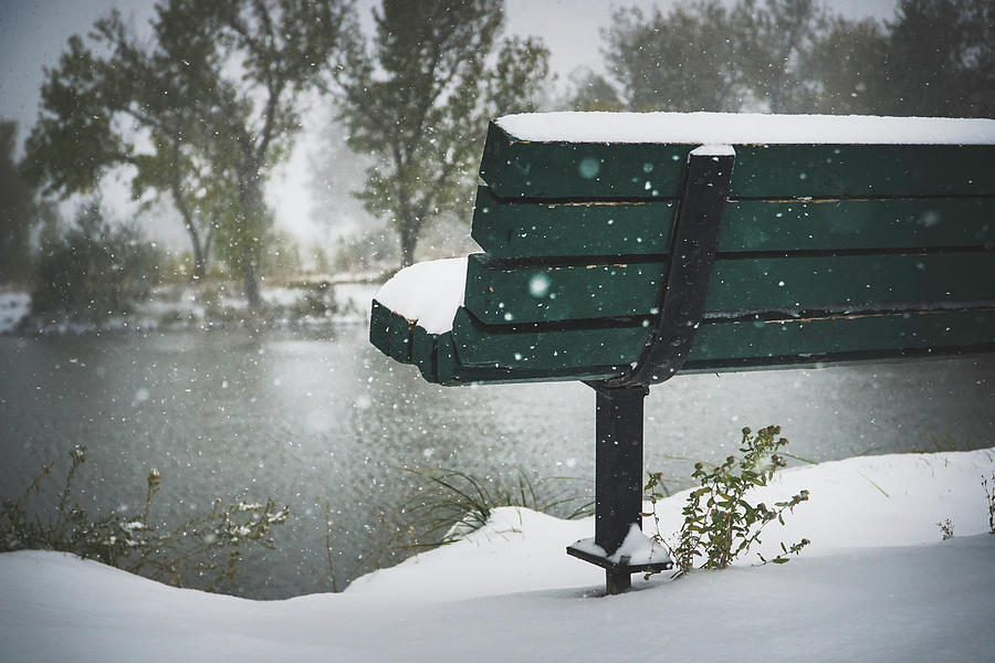 Bench Photograph - Cold Seat by Kamie Stephen