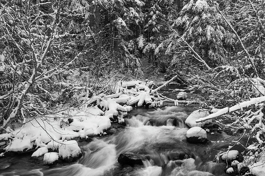 Cold Spring Creek In Winter Photograph