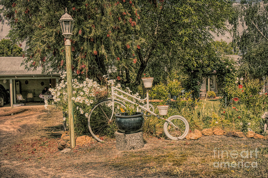 'Colmah' a Garden in Manjimup by Elaine Teague