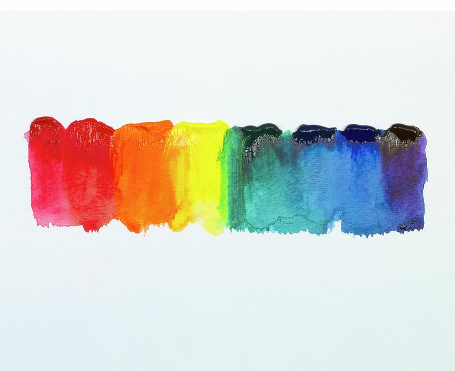 Color Palette Painting