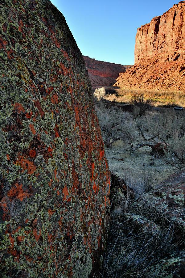 Colorado Riverway Recreation Area Photograph