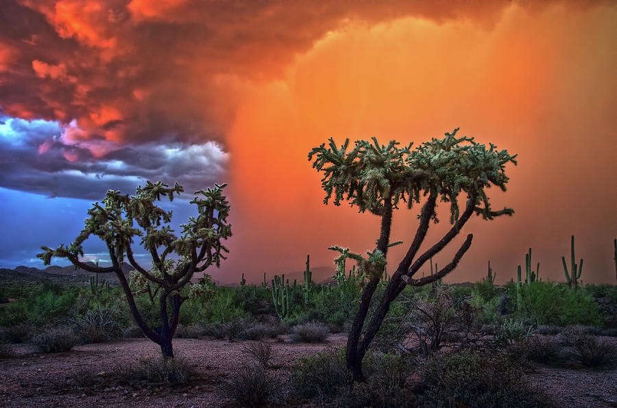Colorful Desert Storm in Central Arizona by Dave Dilli