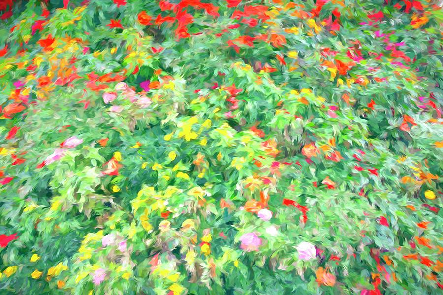 Colorful Garden Abstract Photograph