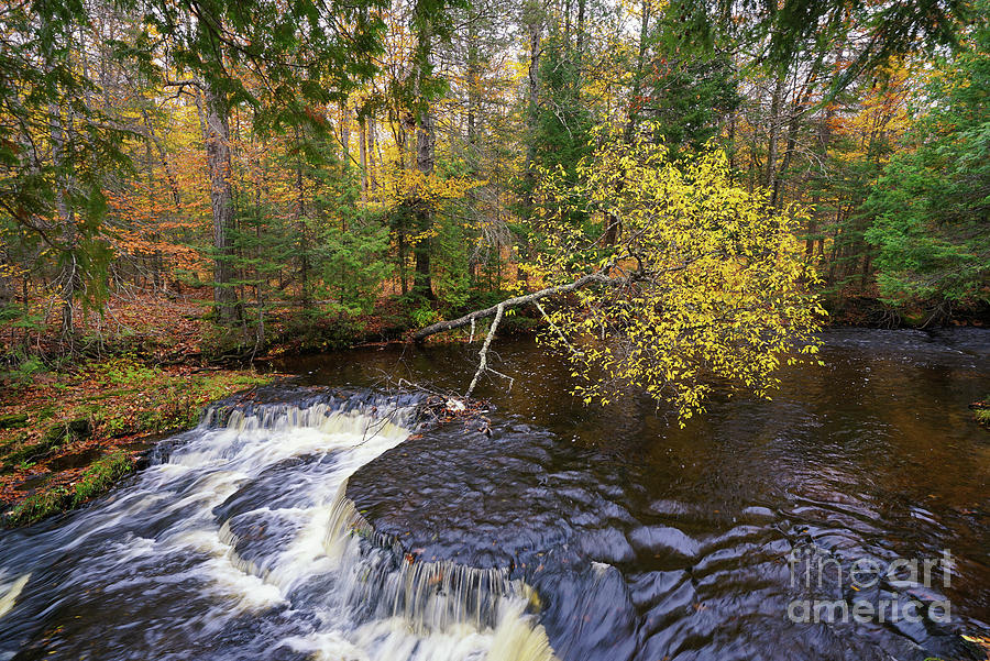Colors And Flow Photograph