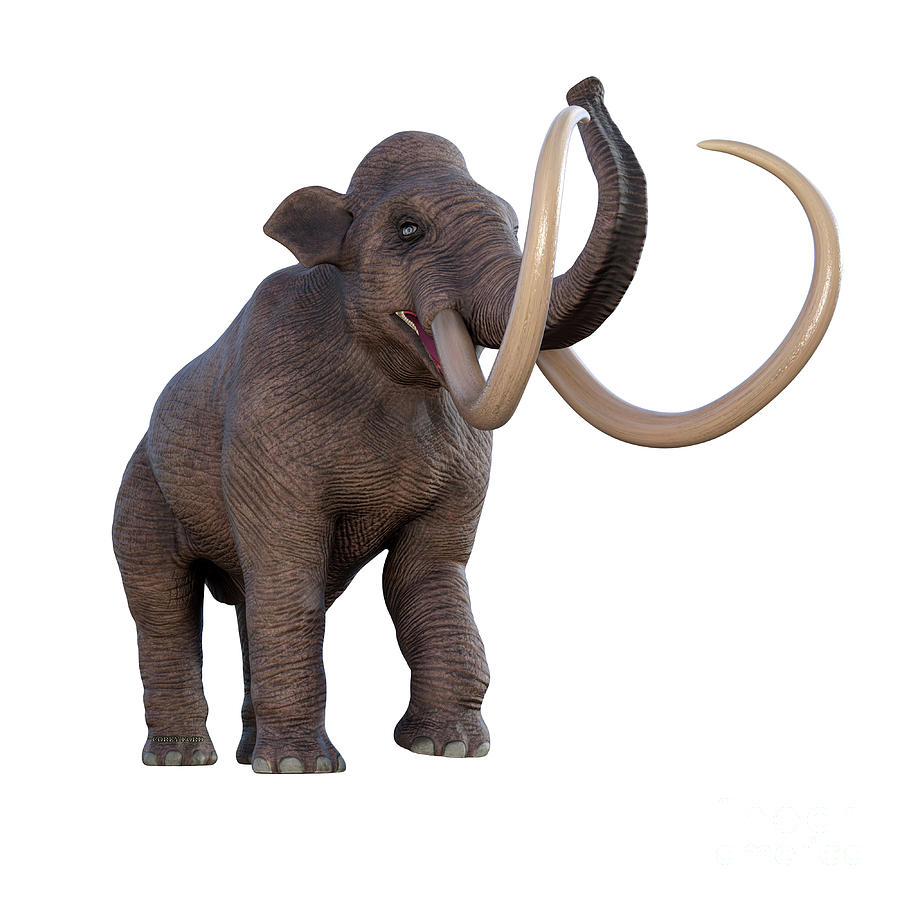 Columbian Mammoth Trumpeting Digital Art