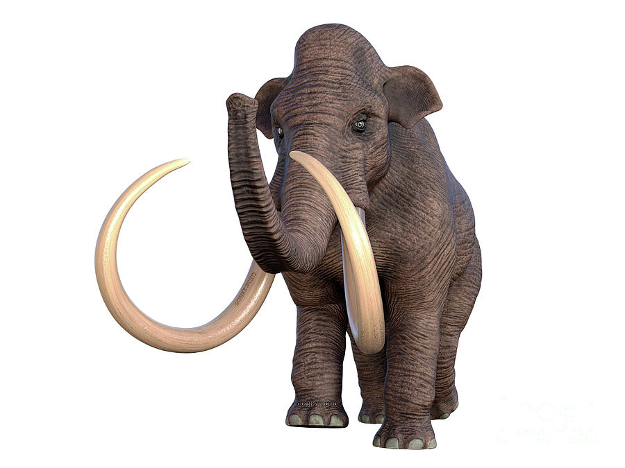 Columbian Mammoth Walking Digital Art