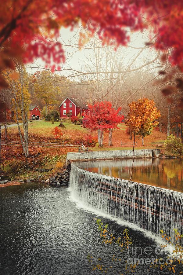 Come Autumn Photograph