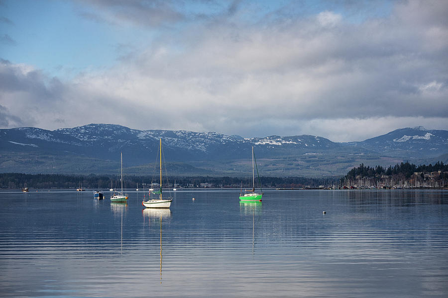 Comox Harbour by Randy Hall