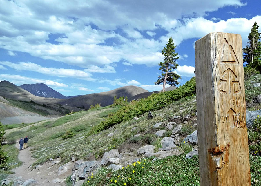 Continental Divide Trail Photograph by Staci Grimes