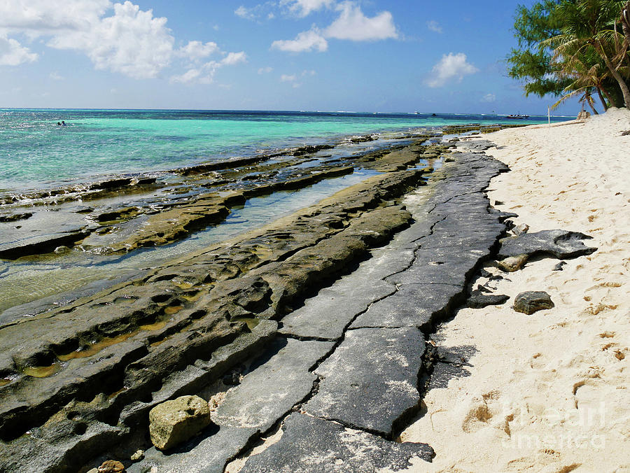 Corals And White Sands Photograph