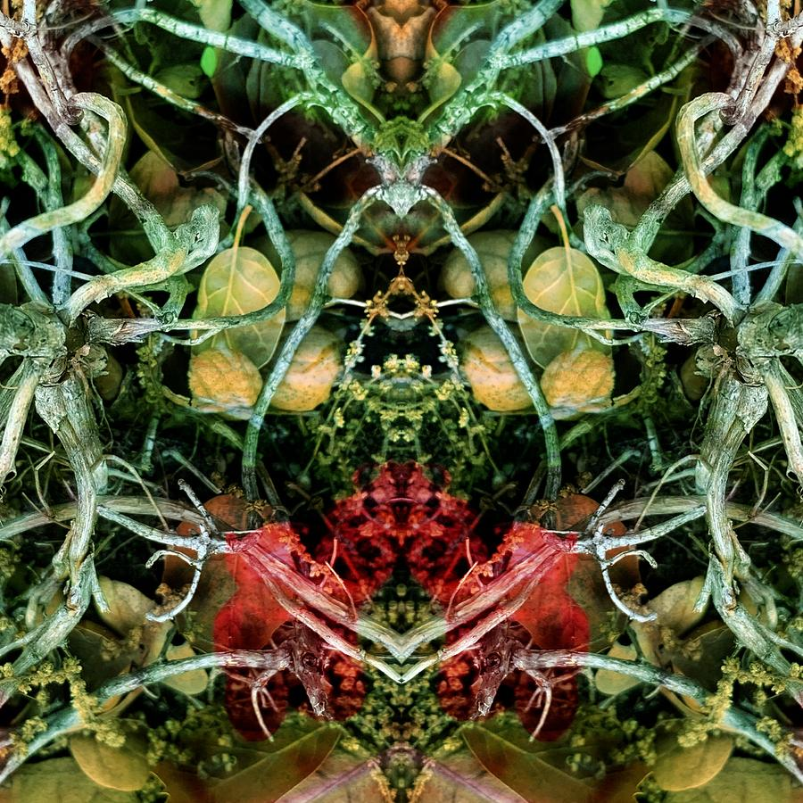 Pareidolia Digital Art - Cosmic Wire by Peter Ellis