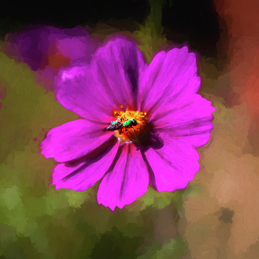 Cosmos Flowers Coreopsideae with Green Orchid Bee 125 by Rich Franco