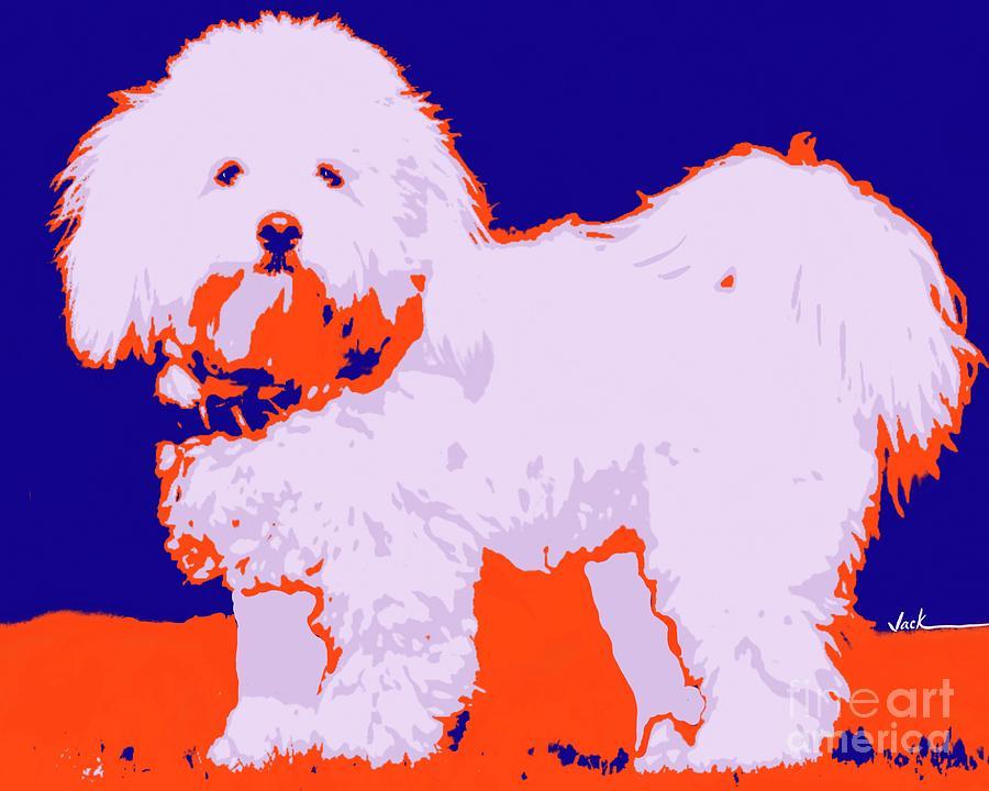 Dog Painting - Coton de Tulear by Jack Bunds