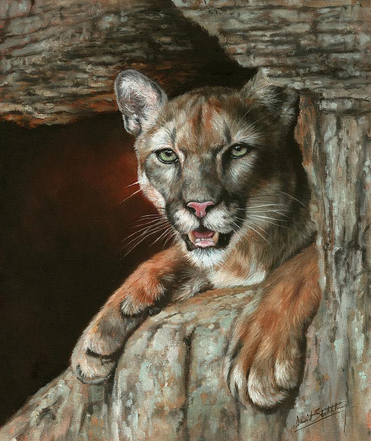 Cougar Among Rocks Painting
