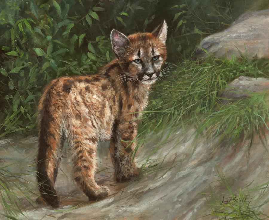 Cougar Cub Painting