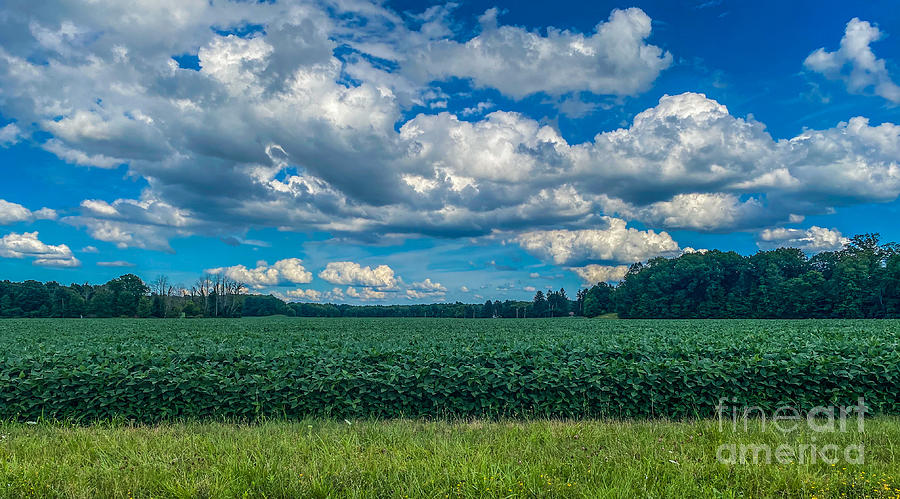 Country Clouds Photograph
