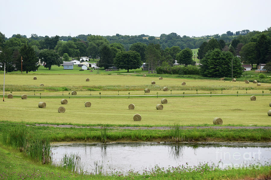 Country Hay Field Photograph
