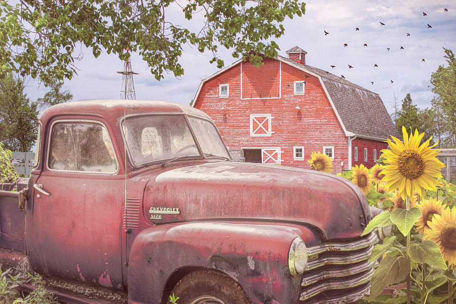 Country Red Chevrolet by Debra and Dave Vanderlaan
