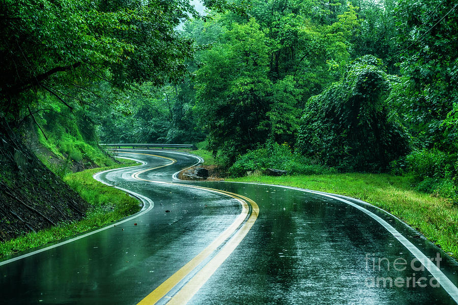 Country Road in Rain by Thomas R Fletcher