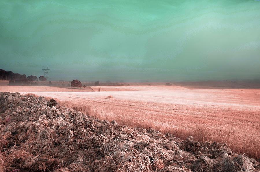 Countryside Foggy Fields - Surreal Art By Ahmet Asar Digital Art