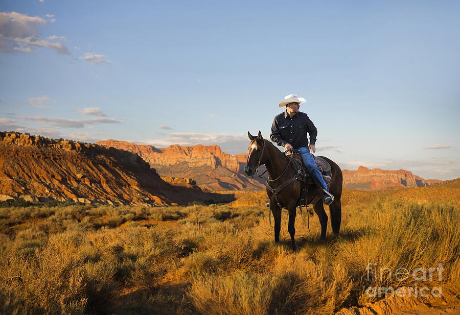 Cowboy on Horseback by Diane Diederich