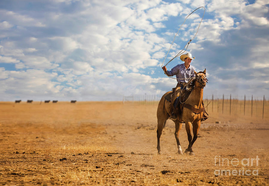 Cowboy On The Range Photograph