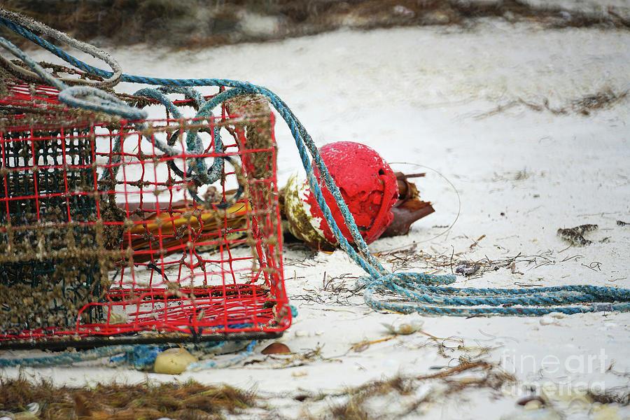Crab Trap Photograph - Crab Trap On The Beach by Felix Lai
