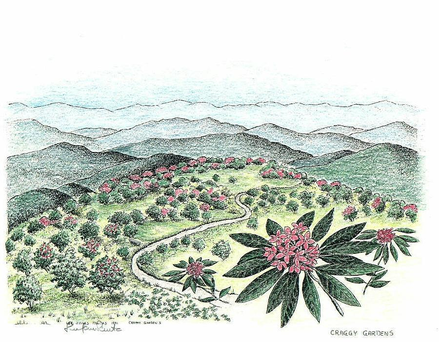 Blue Ridge Parkway Drawing - Craggy Gardens by Lee Pantas