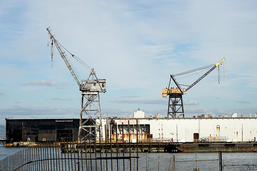 Cranes 6 and 31 by Richard Reeve