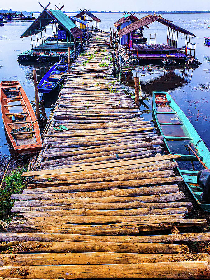 Crazy old log road to the lake surrounded by sunk boats by Jeremy Holton