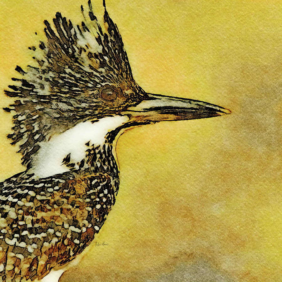 Crested Kingfisher Painting