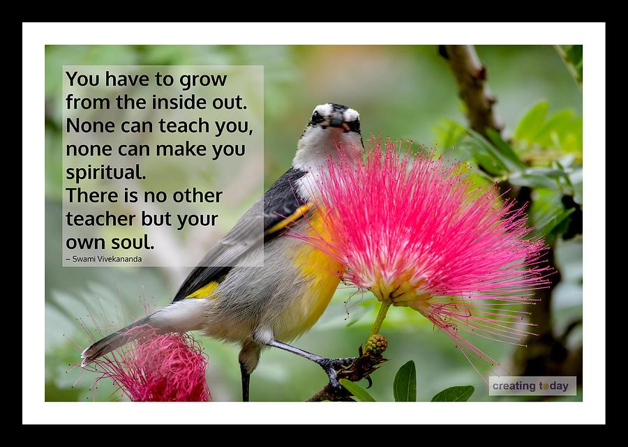 Creating Today Inspiration 23952 Digital Art