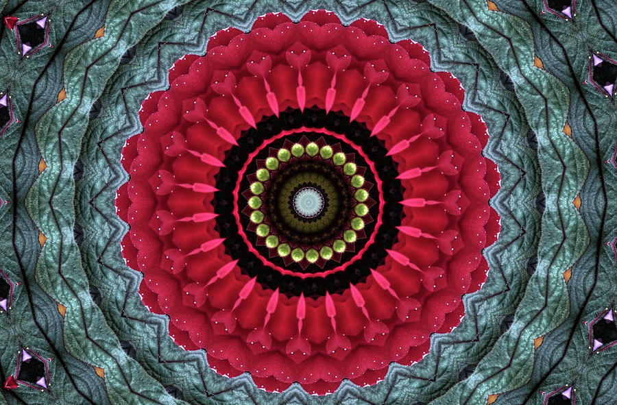 Creative Impatiens Walleriana Flower Kaleidoscope Mixed Media