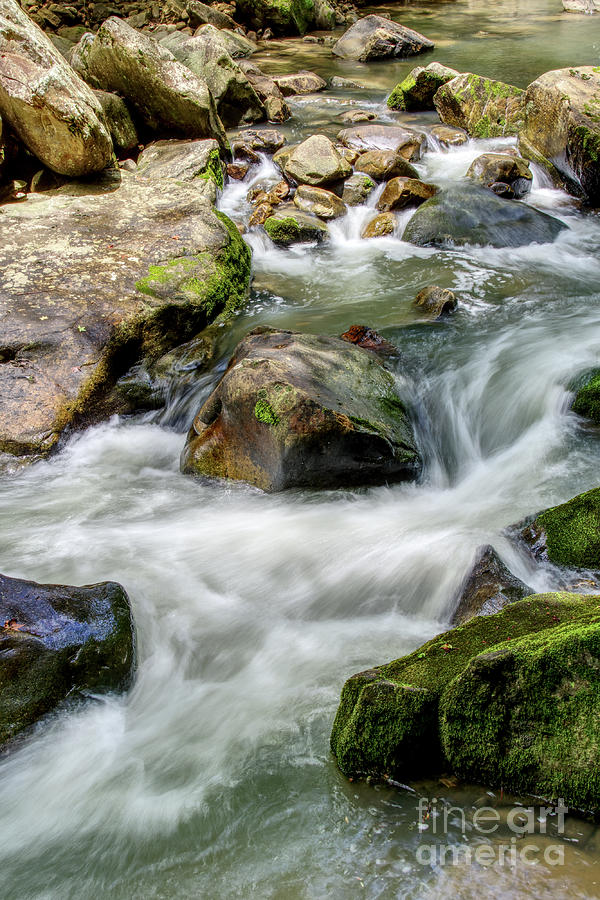 Tennessee Photograph - Creek Water by Phil Perkins