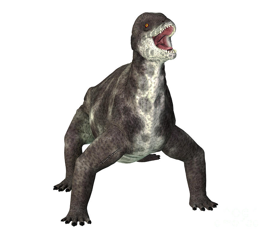 Criocephalosaurus Dinosaur On White Digital Art