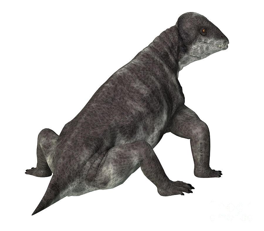 Criocephalosaurus Dinosaur Tail Digital Art