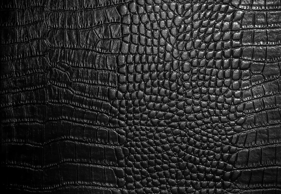 Crocodile Leather Texture Closeup Background Photograph by Thatree Thitivongvaroon