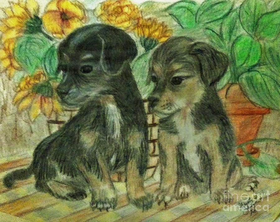 Curious Puppies Drawing