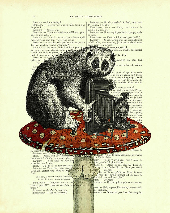 Slow Loris Mixed Media - Cute Photographer by Madame Memento