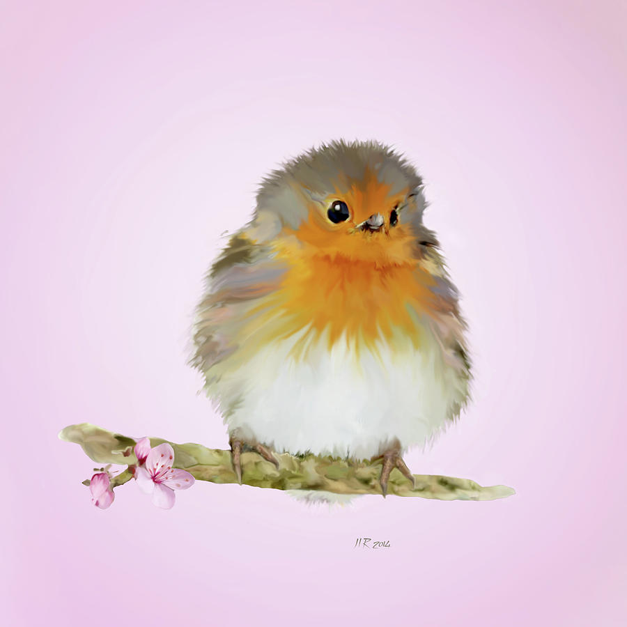 Cute Robin Painting by Bamalam Photography